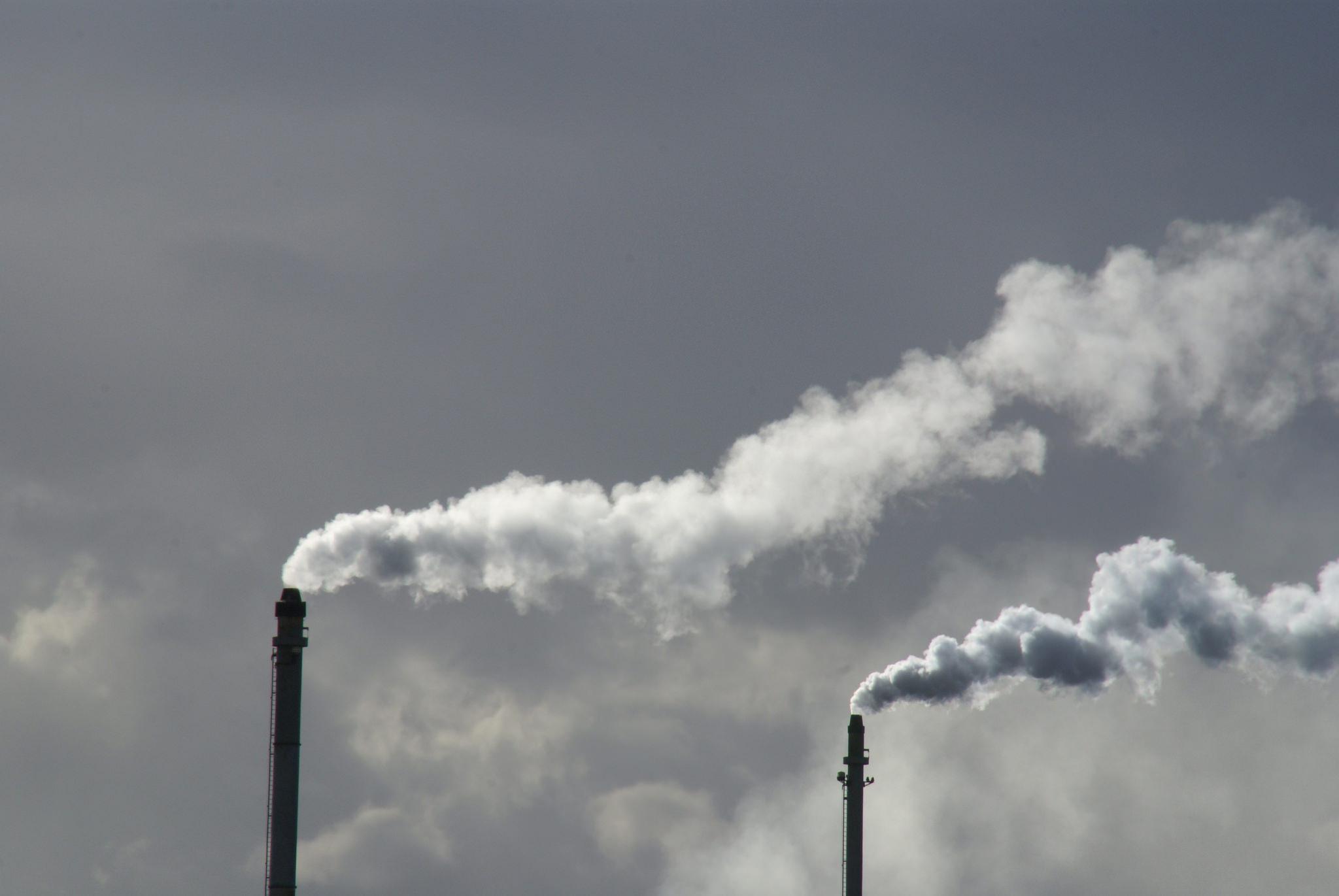 La canapa e l'effetto serra