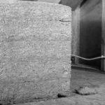 Canapa: il materiale da costruzione del futuro